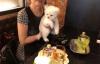 【美天棋牌】周杰伦晒妈妈叶惠美照片 抱可爱狗狗微笑气质佳