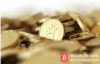【美天棋牌】俄罗斯21岁男子涉嫌利用政府服务器挖掘比特币