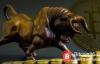 【美天棋牌】加密货币多头已经准备好,为什么加密货币市场将会再次起飞?