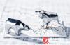 【美天棋牌】熊市之年:加密货币和美股的同步下跌只是巧合吗?