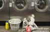 【美天棋牌】洗钱和犯罪的温床:加密货币ATM机竟在区块链深冬逆市猛涨