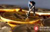 """【美天棋牌】加密货币减产 四年一次的""""狂欢""""?"""