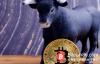 【美天棋牌】加密货币牛市到来之前,市场波动性可能会接近历史低点