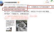 【美天棋牌】杨幂捐赠100万买医疗设备 一线医护人员发文感谢