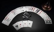【美天棋牌】普通人要成为一名职业德州扑克牌手需要花多长时间?