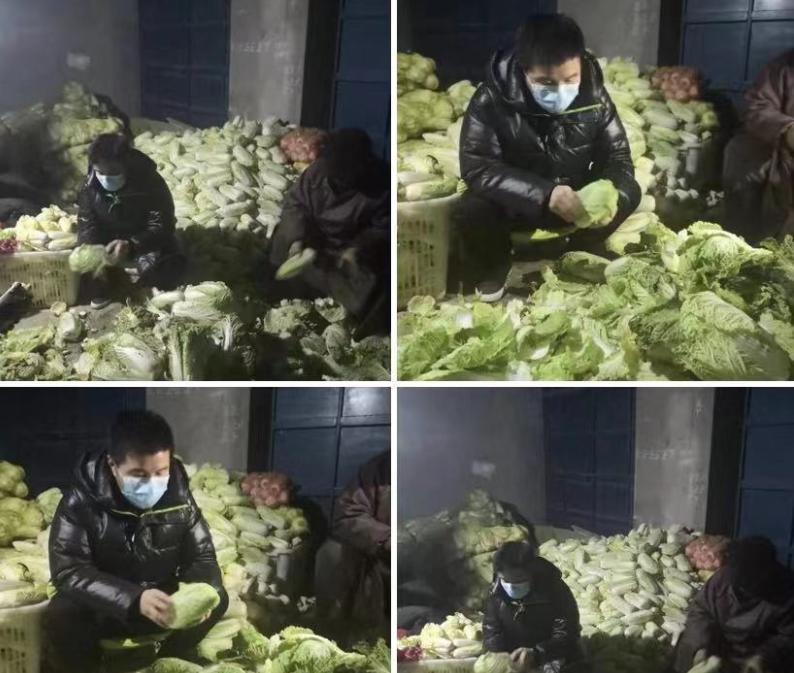 【美天棋牌】水木年华缪杰亲自选购15吨蔬菜捐赠给湖北