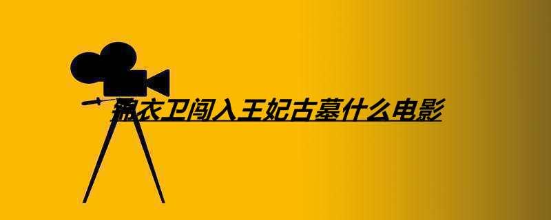 【美天棋牌】锦衣卫闯入王妃古墓什么电影